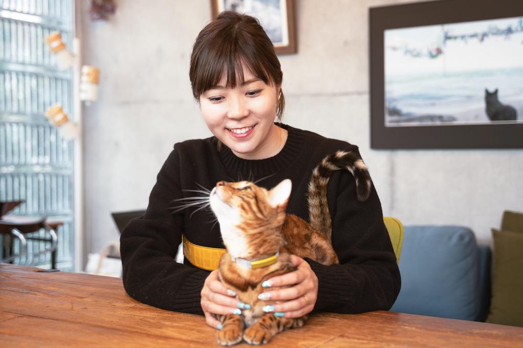 「すべては、猫様のために。」猫の⽣活をテクノロジーで⾒守るCatlog®(キャトログ)_インタビュー風景3